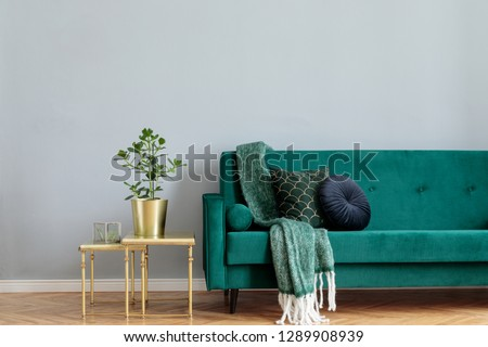 Stylish home interior with green velvet design sofa, gold coffee table, plant  and elegant blanket and pillows. Copy space for inscription, mock up poster. Brown wooden parquet. #1289908939