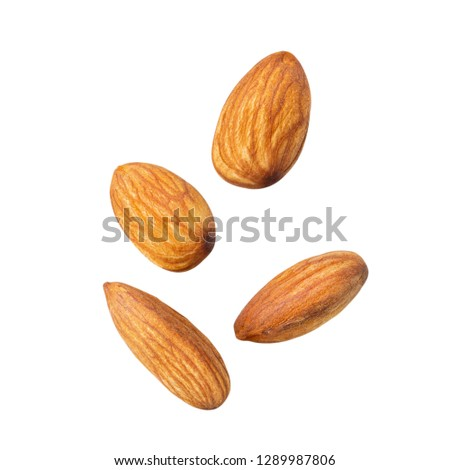 brown almond  close up on white isolated