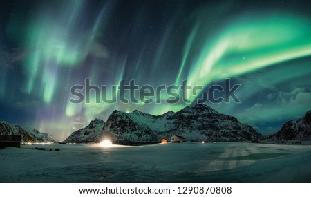 Aurora borealis or Northern lights over snow mountain on coastline in Flakstad, Lofoten islands #1290870808