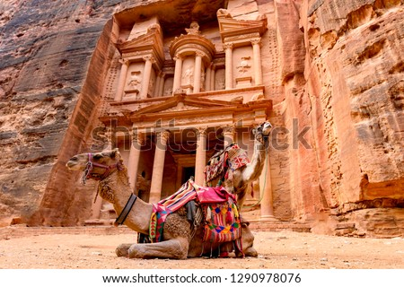 Spectacular view of two beautiful camels in front of Al Khazneh (The Treasury) at Petra. Petra is a historical and archaeological city in southern Jordan. #1290978076