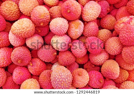 Fresh red litchi, lichee, lychee, or lichi, Litchi chinensis background. Close up photography #1292446819