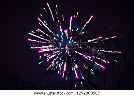 Fireworks behind a tree at new years eve in amsterdam #1292800507
