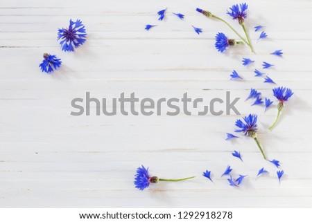 cornflowers on white wooden background #1292918278