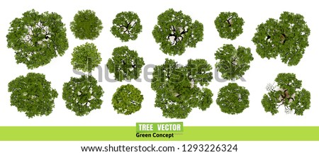 Trees top view for landscape vector illustration. Royalty-Free Stock Photo #1293226324