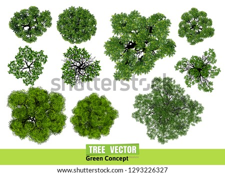 Trees top view for landscape vector illustration. Royalty-Free Stock Photo #1293226327