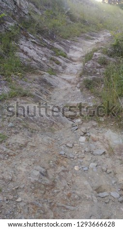 Stone way in the forest #1293666628