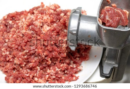 minced meat mincer plate, meat piece raw #1293686746