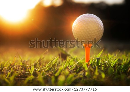 Golf balls on tee in beautiful golf courses with sun rise background.Important equipment to play golf.Sports that people around the world play during the holidays for health.