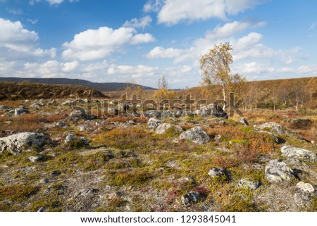 Autumn landscape over a mountain landscape in northern Finland #1293845041