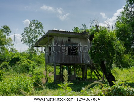 An old abandoned spooky house in the woods. #1294367884