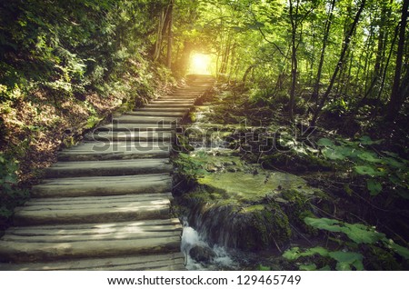 Mystic journey ahead. a quiet lane on a beautiful forest with stream Royalty-Free Stock Photo #129465749