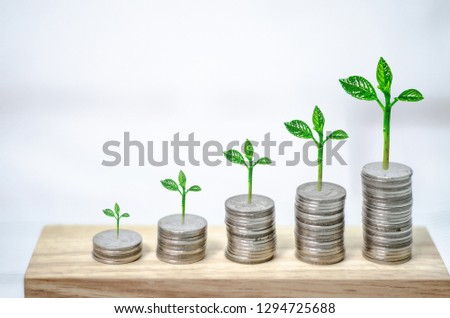 5 rows of coins arranged in ascending order.Seedlings on coins. #1294725688