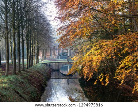 Fairy forest in autumn. Dramatic scene and picturesque picture. Location Oranjewoud Netherlands. #1294975816