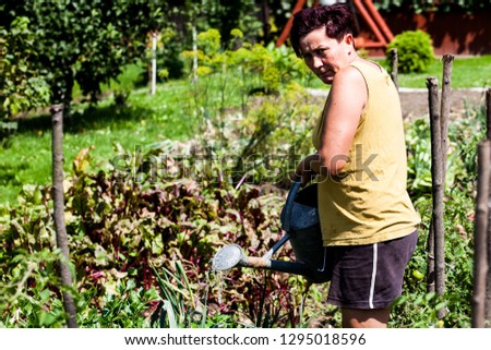 A view of a woman watering the plants in the vegetable garden. The gardener working hard growing the herbs. Planting crops in the backyard. Organic farming. #1295018596