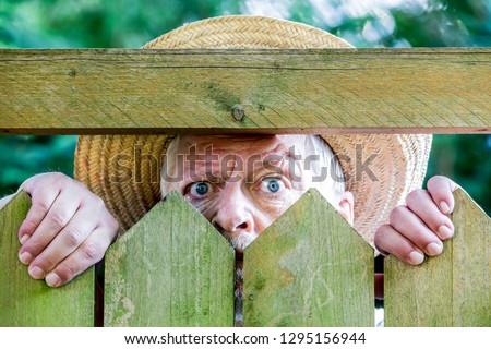 a curious man looks over a garden fence Royalty-Free Stock Photo #1295156944