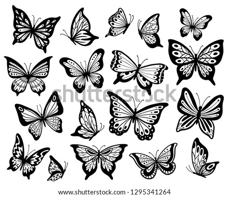 Drawing butterflies. Stencil butterfly, moth wings and flying insects. Butterflies tattoo sketch, fly insect black hand drawn engraving. Isolated vector illustration icons set