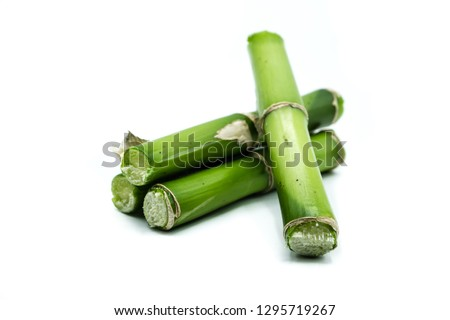 Bamboo isolated on white background #1295719267