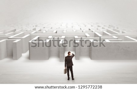 Businessman trying to decide which entrance to choose at the maze #1295772238