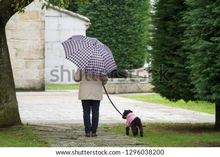 dog and owner with umbrella walking in the rain #1296038200