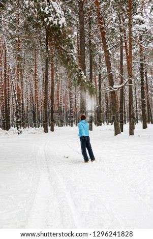 Portrait of a cheerful handsome young man with a red beard in the winter pine forest. He blew snow from a pine branch on a winter day. Tall pines. vertical oriented #1296241828