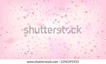 Nice Sakura Blossom Isolated Vector. Feminine Falling 3d Petals Wedding Design. Japanese Blooming Flowers Wallpaper. Valentine, Mother's Day Pastel Nice Sakura Blossom Isolated on Rose #1296395935