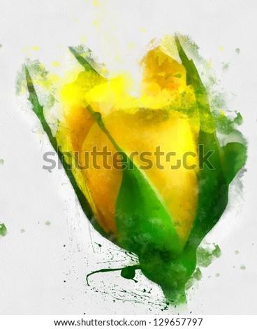 beautiful yellow rose, watercolor
