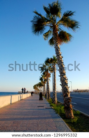 Malaga, Andalusia/Spain - January 05 2019: promenade with palm trees #1296995332