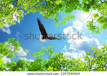 eagle flying among green trees with sunny sky in background
