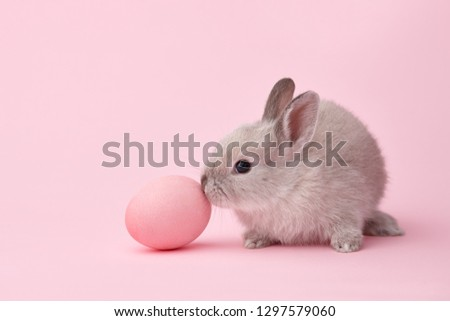 Easter bunny rabbit with painted egg on pink background. Easter holiday concept. #1297579060