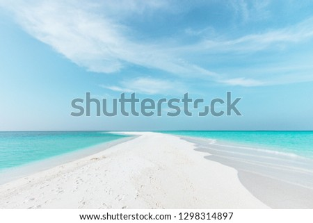 Sandbank in Maldives with crystal clear beautiful water and white sand.  #1298314897