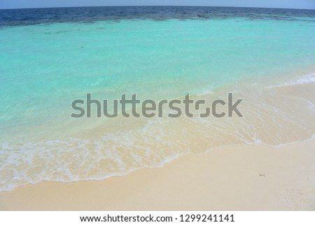 The beach of a tropical island with white coral sand and clear light blue water of the Indian Ocean and the border of the dark deep ocean. Island Resort Maldives #1299241141