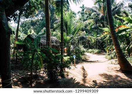 Om beach Gokarna Karnataka India January 28, 2019 View of the jungle cafe guesthouse in Om beach in the morning #1299409309