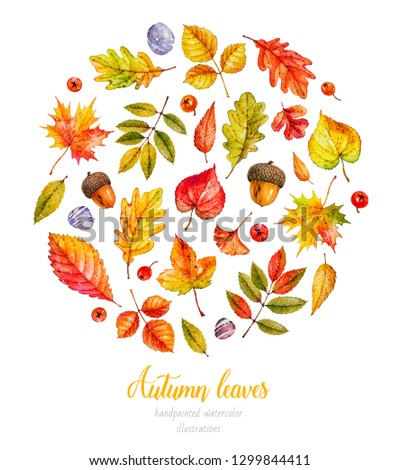 Autumn leaves. Watercolor  botanical illustrations. Collection of watercolor leaves #1299844411