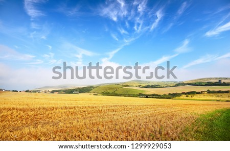 Reaped field and green hill view on a sunny day in France #1299929053