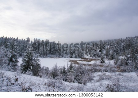 Snow covered evergreen trees with frozen snow covered pond in the middle and low clouds above #1300053142