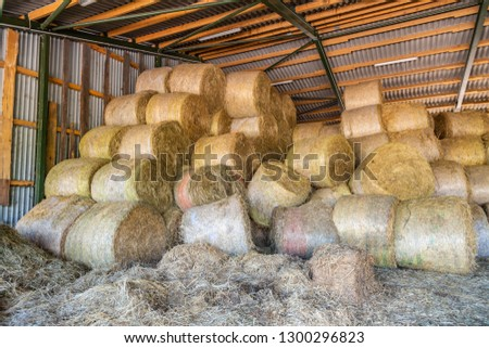 many straw bales and hay bales lie dry under one roof #1300296823