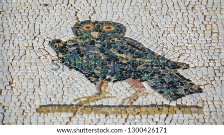 Details of Roman mosaic floor with owl and shallow depth of field