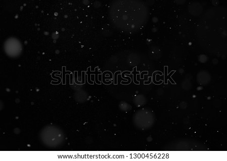 Abstract splashes of Rain and Snow Overlay Freeze motion of white particles on black background #1300456228
