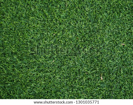 artifical turf texture background. #1301035771