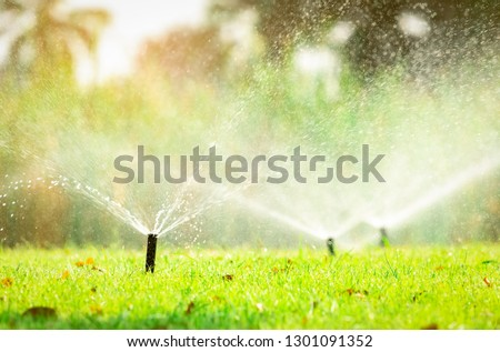 Automatic lawn sprinkler watering green grass. Sprinkler with automatic system. Garden irrigation system watering lawn. Sprinkler system maintenance service. Home service irrigation sprinkler. #1301091352