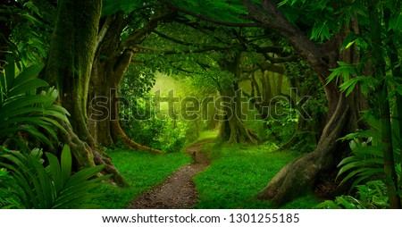 Asian tropical rainforest #1301255185