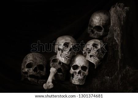 Still life of genocide human skulls on wooden