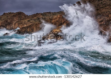 Huge waves crashing on the rocks of Syros island, Greece. The seagulls enjoyed it highly. Royalty-Free Stock Photo #130142627