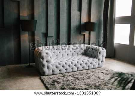 soft velvet grey sofa. minimalistic loft living room. textured gray wall. black floor lamp. gray rug near couch #1301551009
