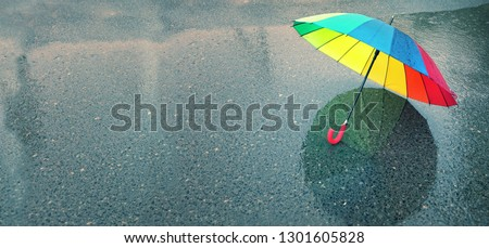 rainbow umbrella in puddle. colorful umbrella and rainy weather season. copy space. banner Royalty-Free Stock Photo #1301605828