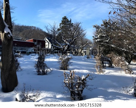 Dramatic Winter Scenery, Japan #1301715328