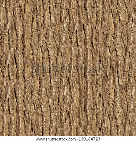 Bark of Elm. Seamless Tileable Texture. #130184723