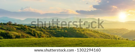 panorama of romania countryside at sunset in evening light. wonderful springtime landscape in mountains. grassy field and rolling hills. rural scenery #1302294160