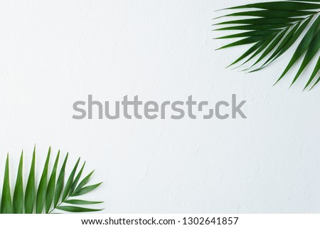 summer vacation, paradise, travel. ocean shore, tropical beach, sea coast. palm leaves on white background. minimal summertime concept. creative layout, banner or poster template with copy space #1302641857