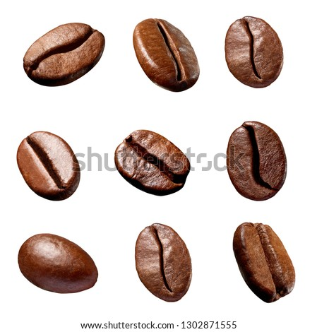 collection of various coffee bean on white background #1302871555